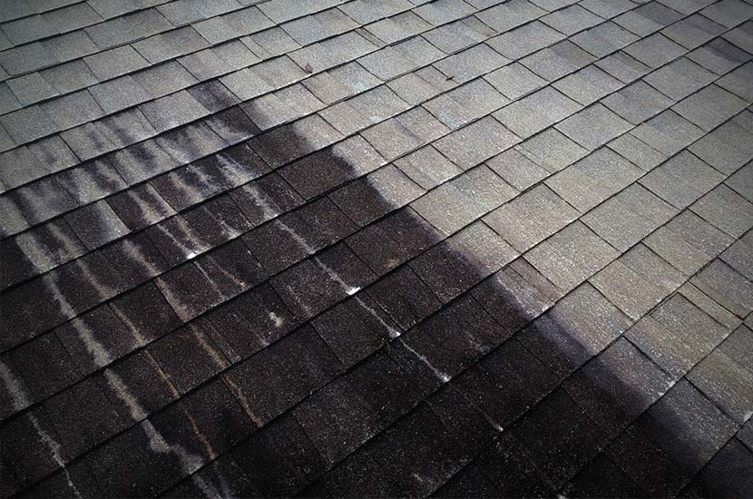 Roof Cleaning Seminole County Central Florida